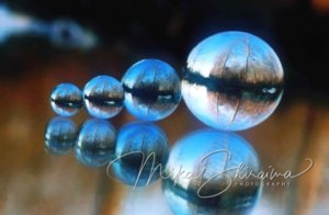 marbles art with nature by Mika Shiraiwa